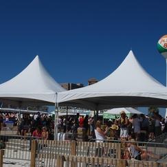 HighPeak Frame Tent Rentals